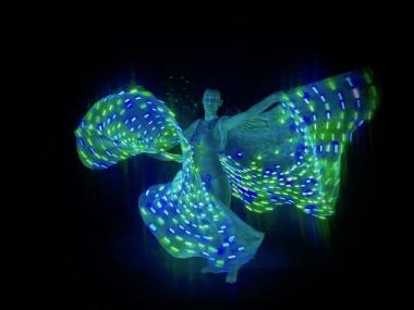 LED Light Wings