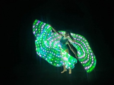 LED Light Wings