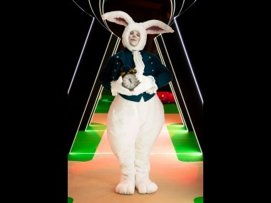 bílý králík